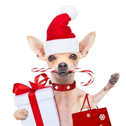 7 Ways to Boost your PPC for the 2015 Holiday Season