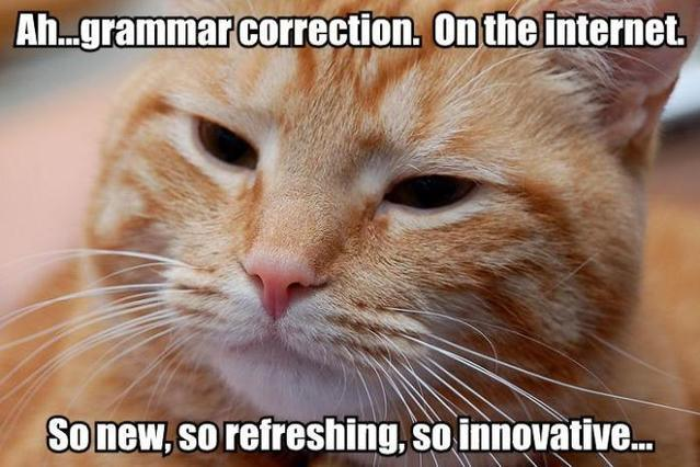 GRAMMAR CORRECTION ON THE INTERNET